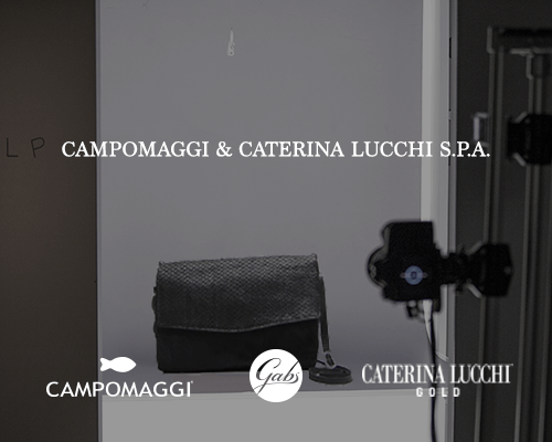 E-Commerce Solutions: The case history of Campomaggi & Catrina Lucchi SpA